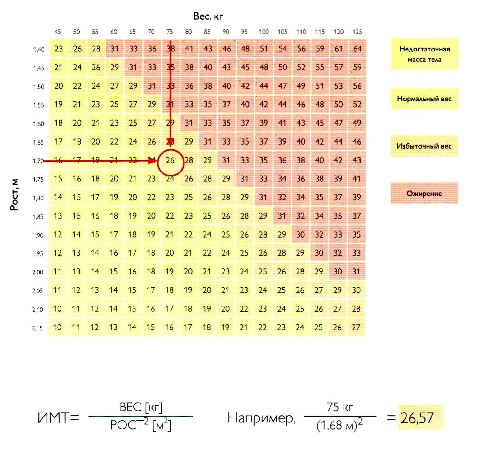 Как рассчитать самой индекс массы тела